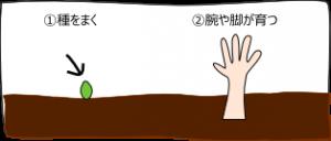 garden_kaisetu